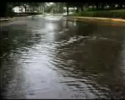 Stormwater Management (Student Video Course) English Interactive Training